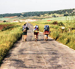 pilgrims walking on the camino de santiago