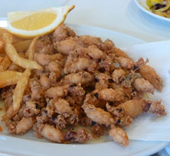 puntillitas fried squid