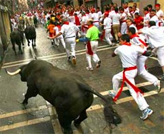 people running with bulls in Pamplona