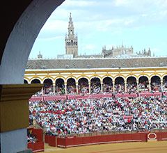 Plaza de Toros bull ring in Seville